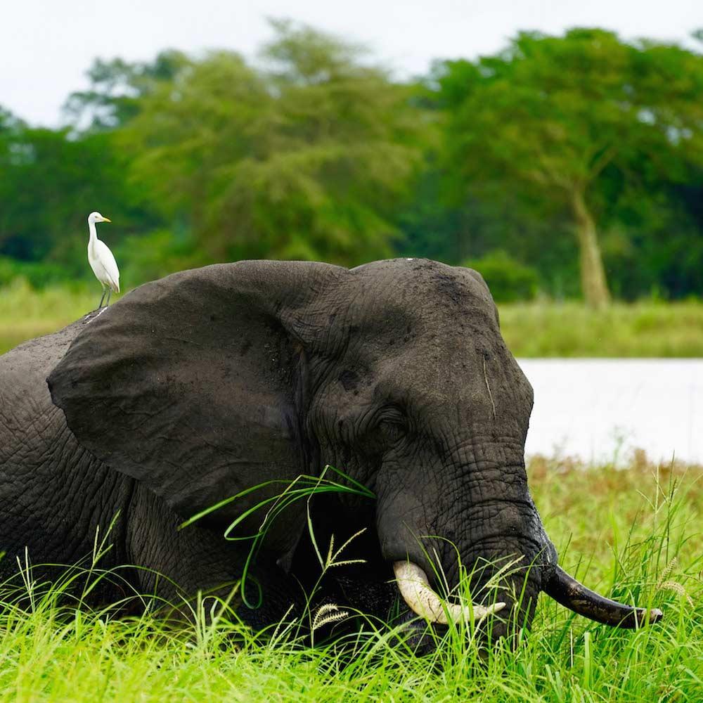 Lake Malawi National Park