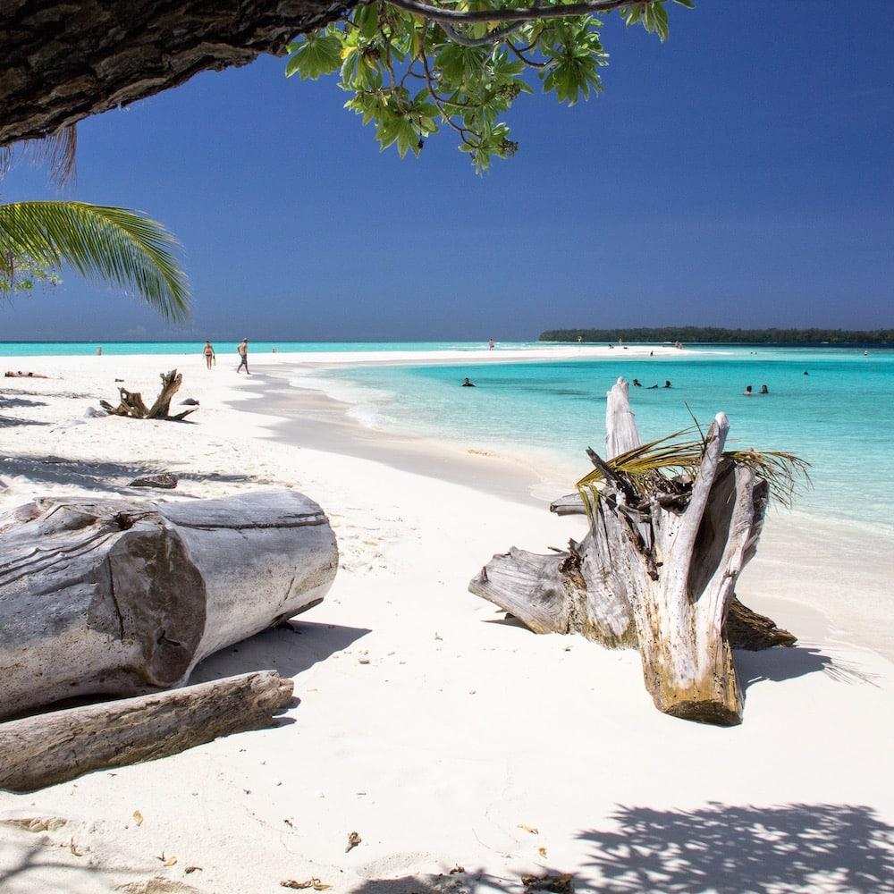 Conflict Islands