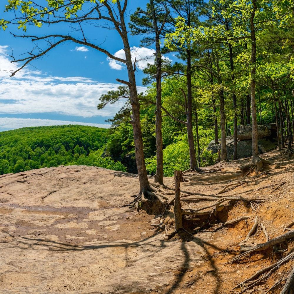 Ozark National Forest, Arkansas