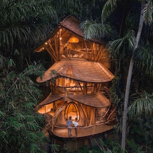 Holidaying at New Heights: The World's Best Treetop Hotels
